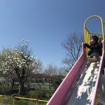 イヤイヤ期のお出かけって大変!2歳児の エンドレス滑り台とエンドレス抱っこっこ。